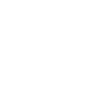CHAS Premium Plus Accredited contractor